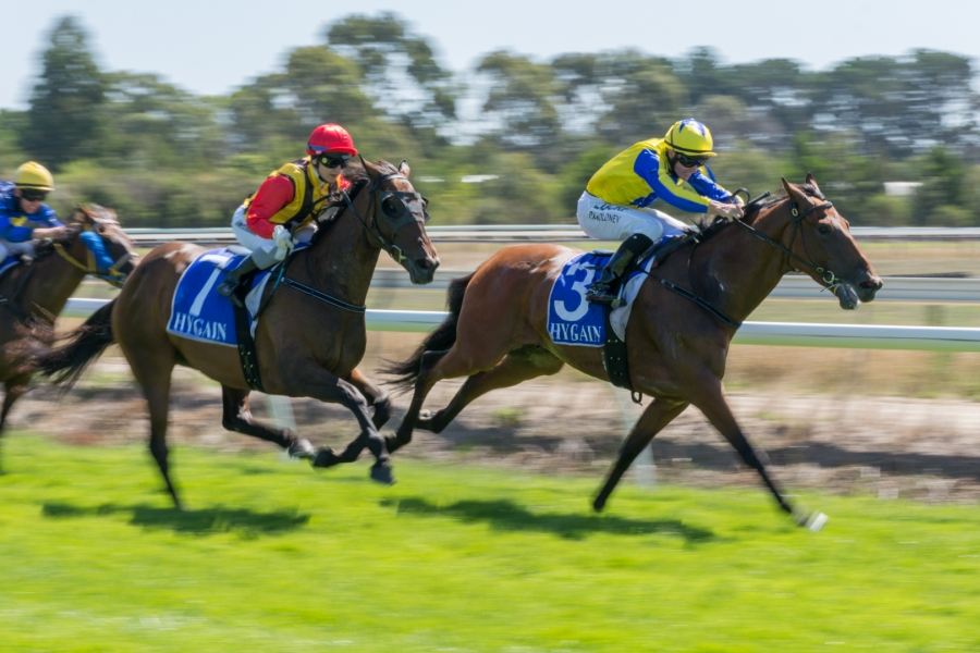 Horseracing-1